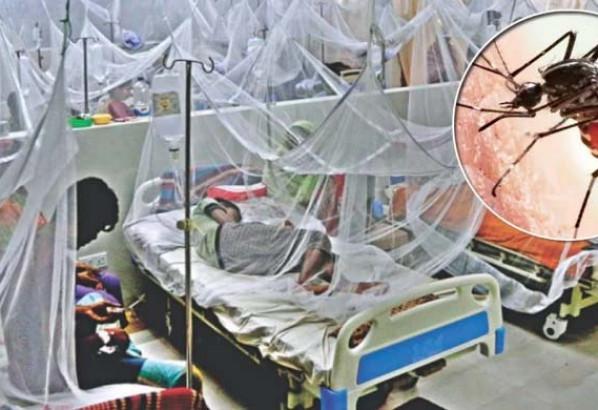 ডেঙ্গুতে আক্রান্ত  ১১২ জন হাসপাতালে ভর্তি হয়েছেন